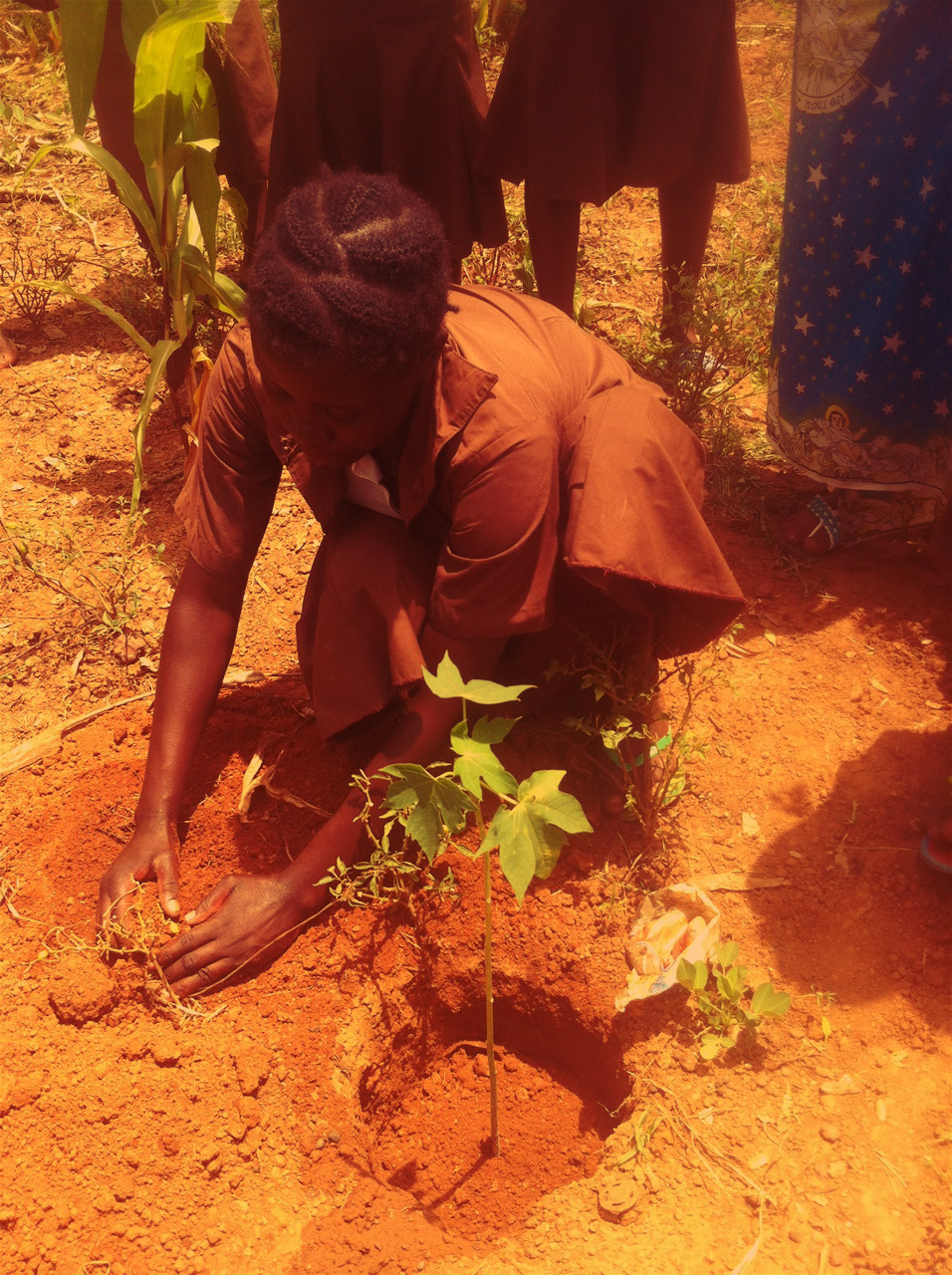 gemeinsam für Wapa Baumprojekt